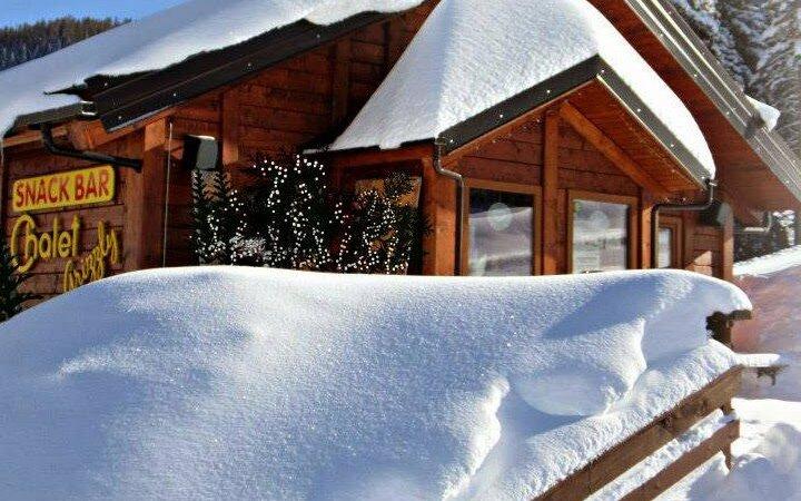 chalet grizzly snow w