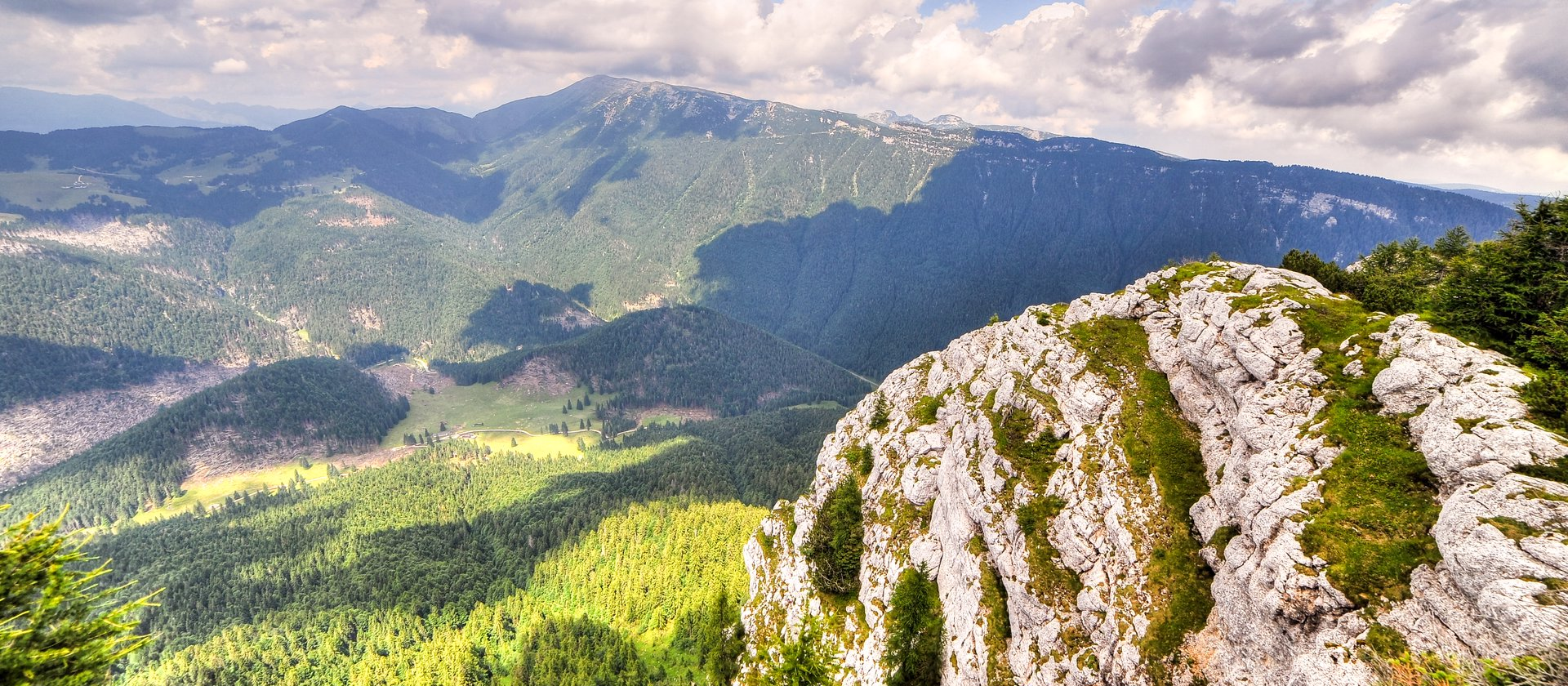 estate panorama 8 w