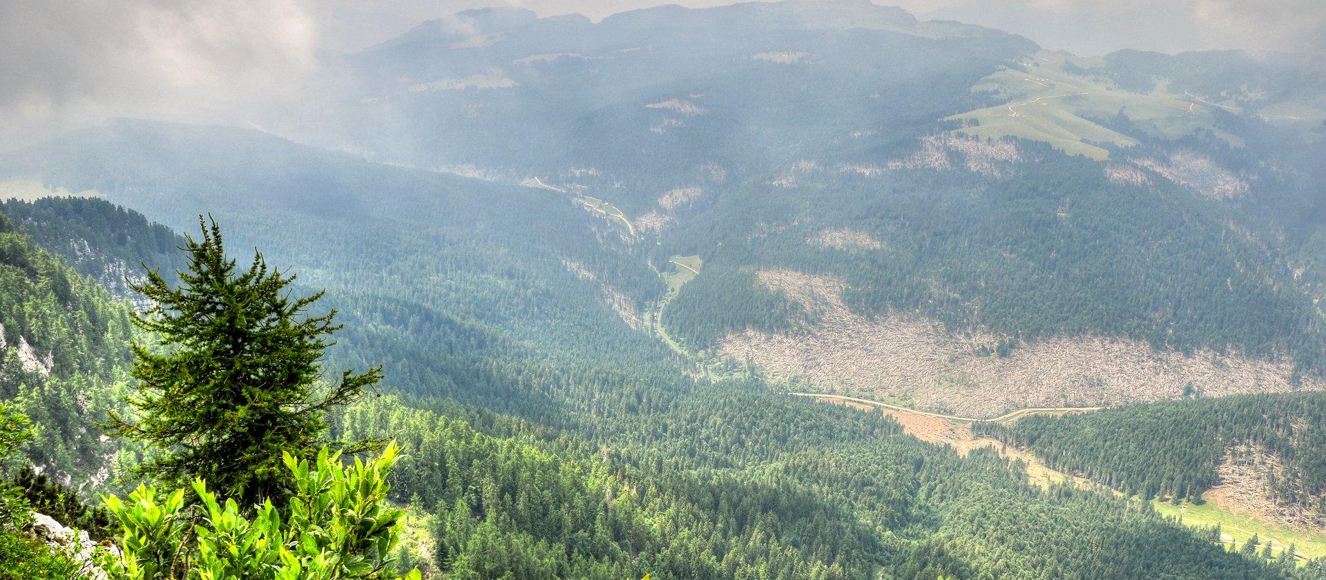 panorama dalla cima verena w