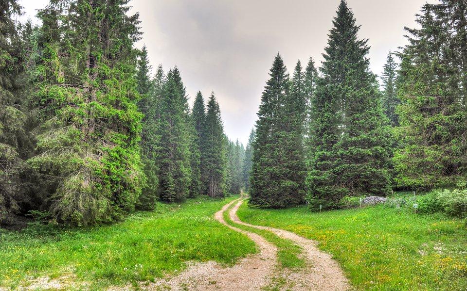 sentieri per passeggiate w