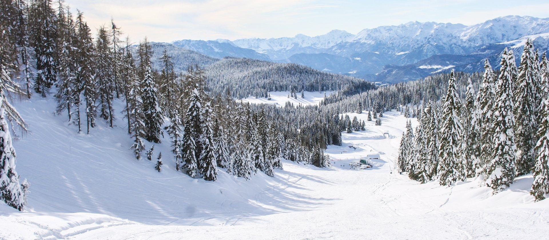 Ski Verena Emozioni Tutto L Anno Sul Monte Verena